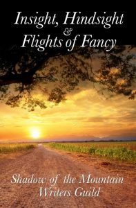 Insight Hindsight and Flights of Fancy cover