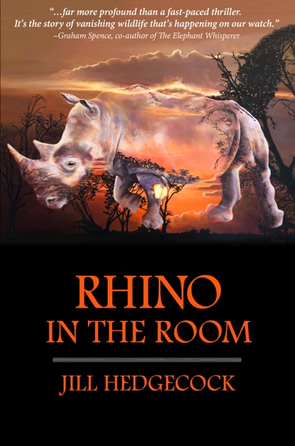 Rhino in the Room cover